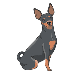 Pinscher dog illustration