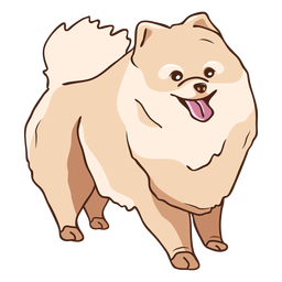 Pomeranian dog illustration