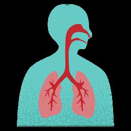 Sistema respiratorio texturizado