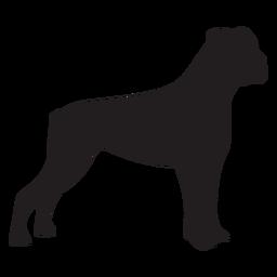 Perro boxer lateral negro