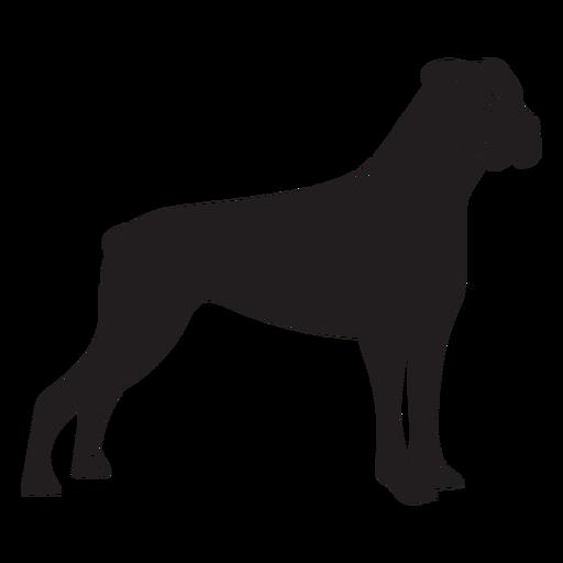 Side boxer dog black