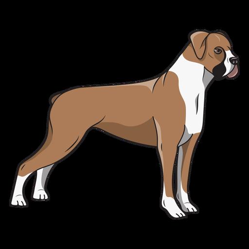 Side boxer dog illustration
