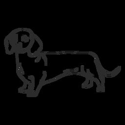 Golpe de perro dachshund lateral