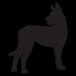 Lado gran danés perro negro