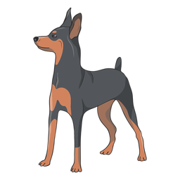 Ilustración de perro pinscher lateral
