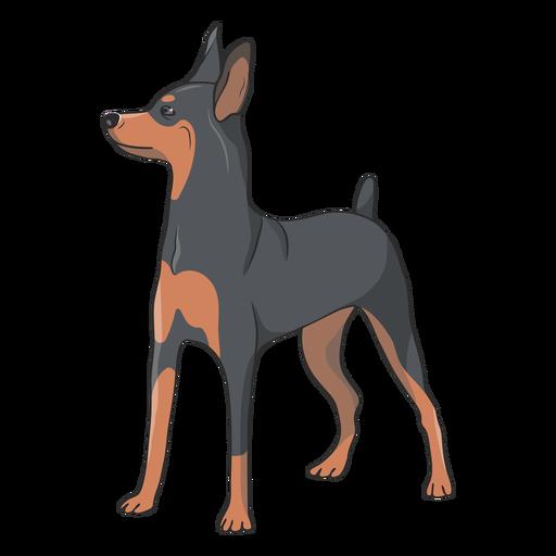 Side pinscher dog illustration