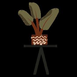 Planta de interior simple plana