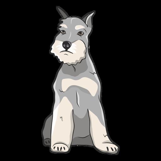 Sitting schnauzer dog illustration