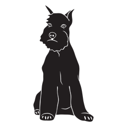 Perro schnauzer sentado lado negro
