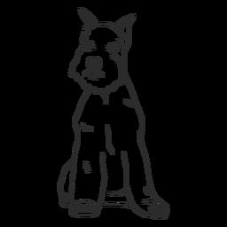 Sitting schnauzer dog stroke