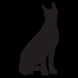 Sentado perro gran danés negro