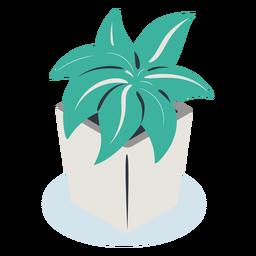 Planta de maceta cuadrada isométrica
