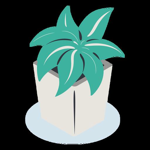 Planta de maceta cuadrada isométrica Transparent PNG