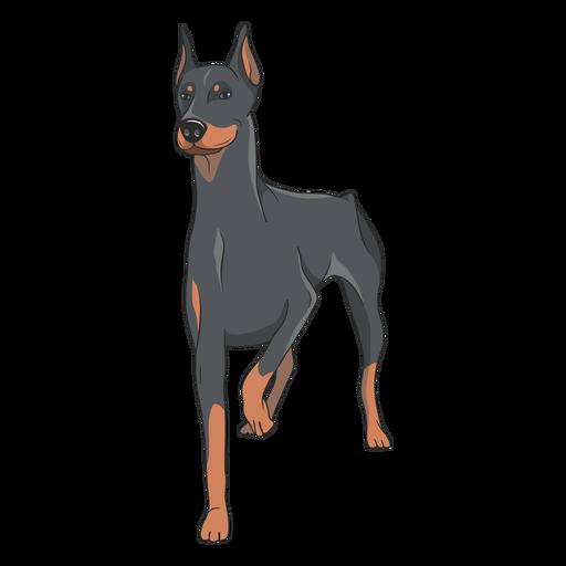 Ilustración de perro doberman de pie