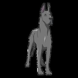 Standing great dane dog illustration