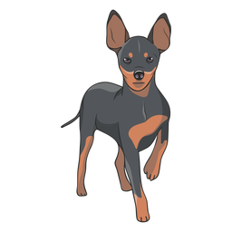 Standing pinscher dog illustration