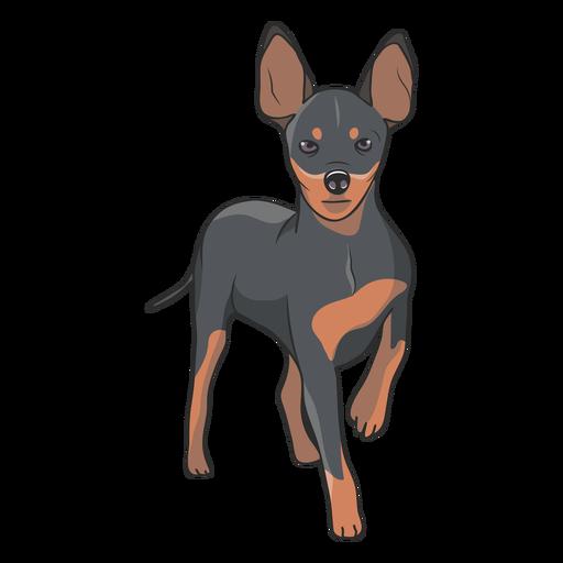 Standing pinscher dog illustration