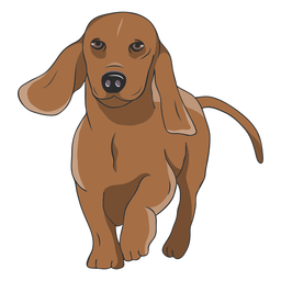 Walking dachshund dog illustration