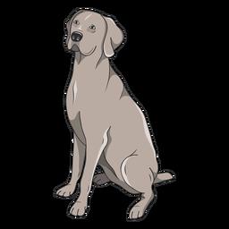 Ilustración de perro Weimaraner