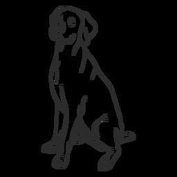 Weimaraner dog stroke