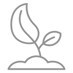 Growing seed icon stroke