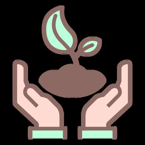 Manos sosteniendo la planta Transparent PNG