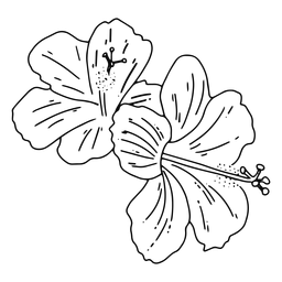 Hawaiianischer Blumenstrich