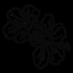 Trazo de flor hawaiana