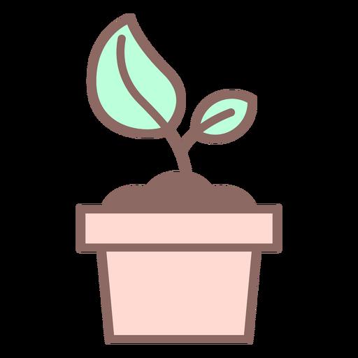 Icono de planta en maceta Transparent PNG