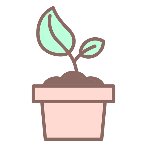 Plant in pot icon Transparent PNG