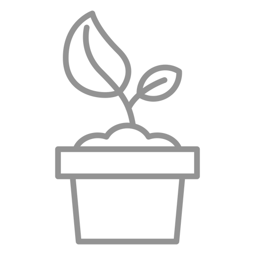 Plant in pot stroke Transparent PNG