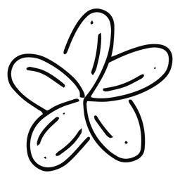 Plumeria Blumenstrichblume