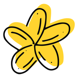 Gelber Strich der Plumeria-Blume