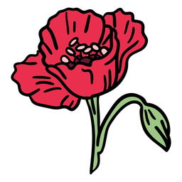 Dibujado a mano flor de amapola floreciente