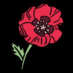Poppy flower hand drawn