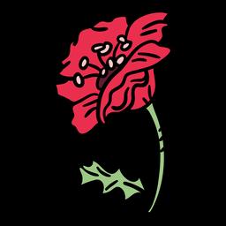 Flor de amapola de dibujado a mano lateral