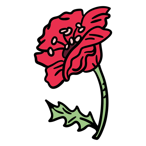Poppy flower from side hand drawn Transparent PNG