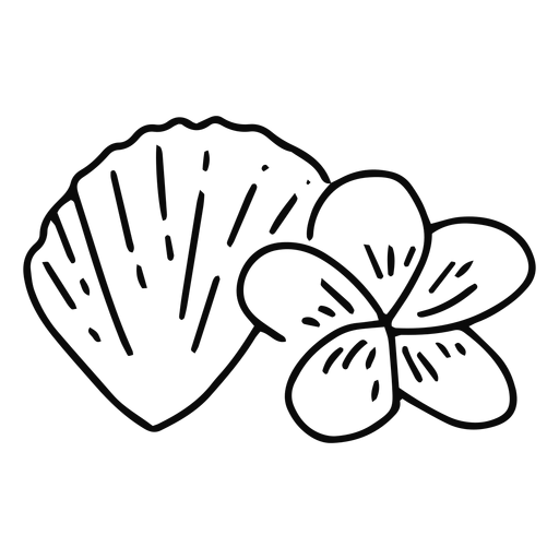 Seashell and plumeria flower stroke Transparent PNG