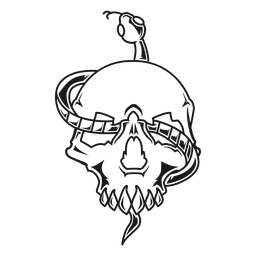 Skull with snake illustration