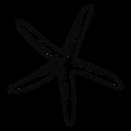 Trazo fino de estrella de mar