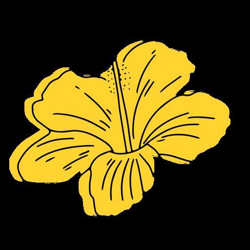 Yellow hawaiian flower hand drawn Transparent PNG