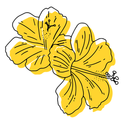 Yellow hawaiian flowers hand drawn