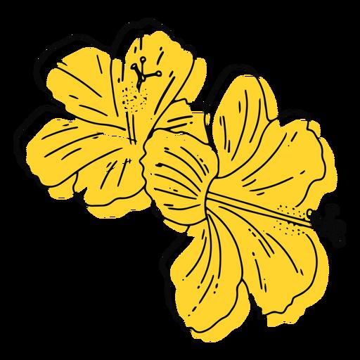 Yellow hawaiian flowers hand drawn