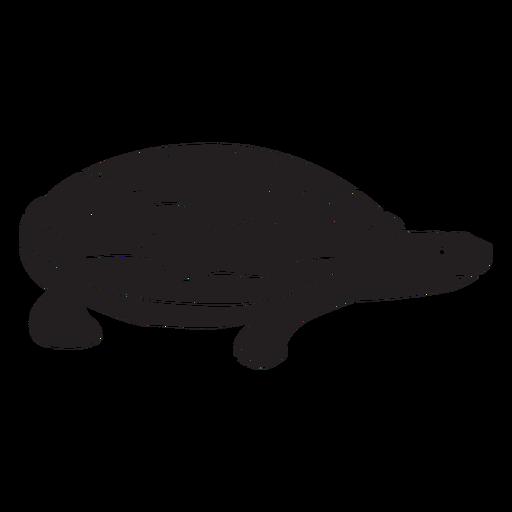 Simple turtle silhouette