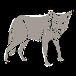 Junge Wolfsskizze