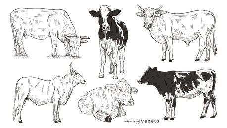 Conjunto dibujado a mano vacas