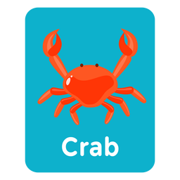 Crab vocabulary flashcard