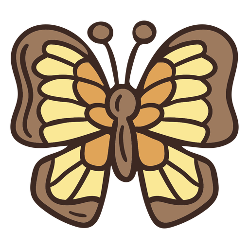 Cute butterfly insect