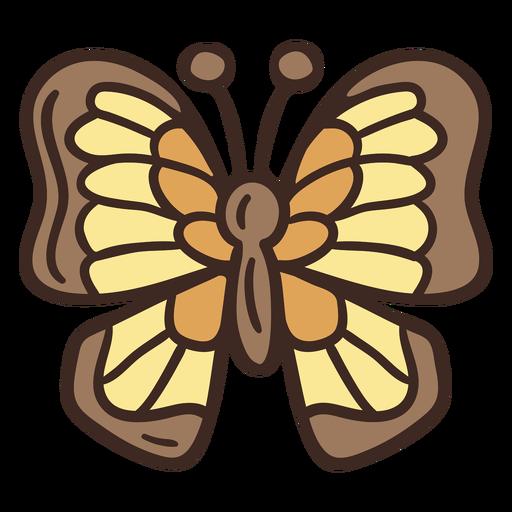 Insecto mariposa linda