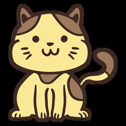 Lindo gato animal